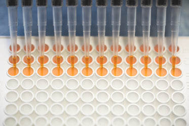 dna research assay tray in lab