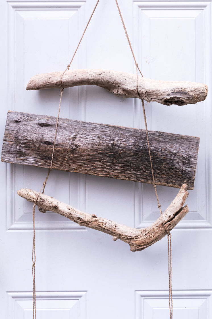 Drift Wood Hanging On A White Door