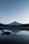 duck paddles past mountain on calm lake