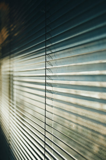 dusty windows and blinds