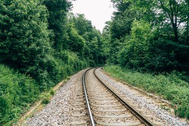 empty rail track surrounded by trees
