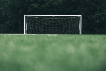 empty soccer net in front of forest low angle