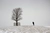 figure and tree on snowy hill