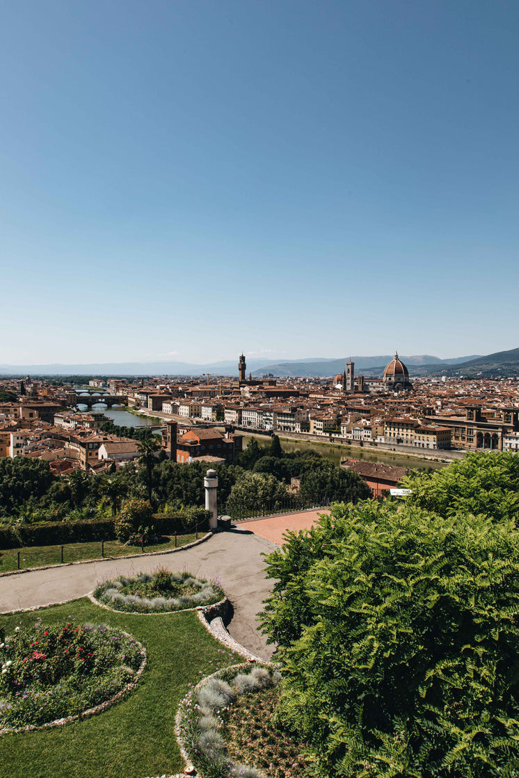 Florence City And Guarden
