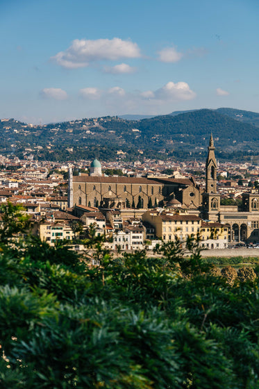 florence in the sunlight