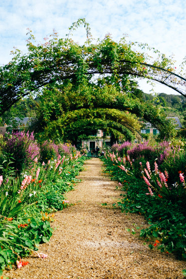flower lined pathway with an archway overhead
