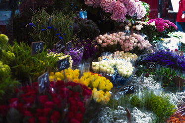flowers for sale!