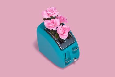 flowers in toaster
