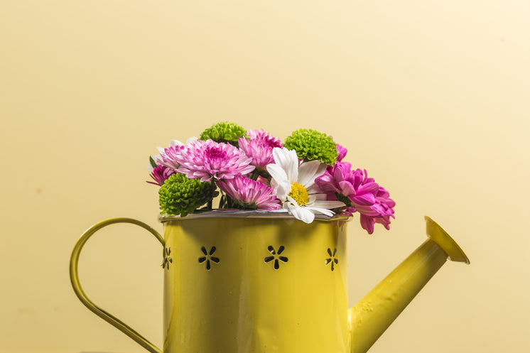 Flowers In Yellow Watering Can