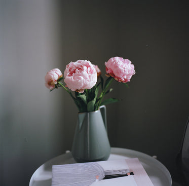 Free Stock Photo of Flowers Shot On Film — HD Images