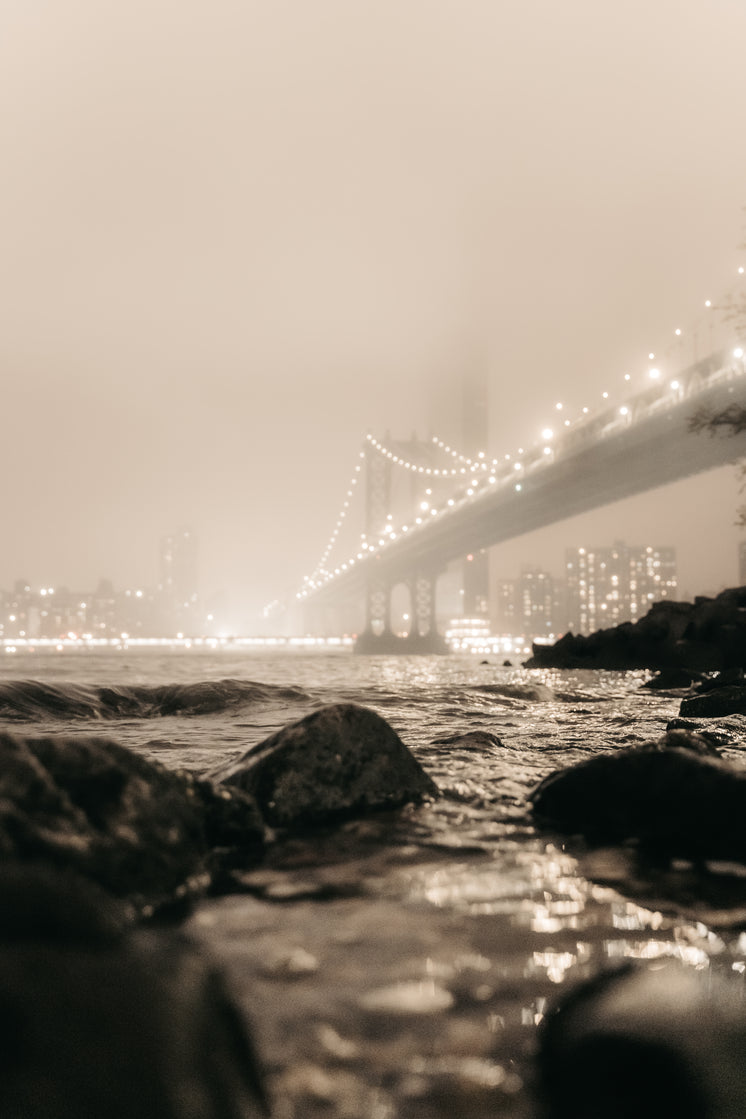 Foggy City Bridge