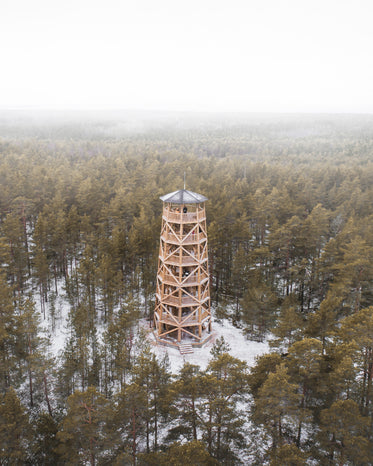 forest with a tall tower in the winter