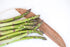 Free Fresh Asparagus With Water Drops Photo — High Res Pictures