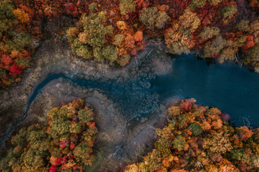 frost biting at a river in fall