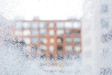 frosted winter window glass