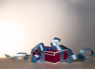 gift box & curly ribbon