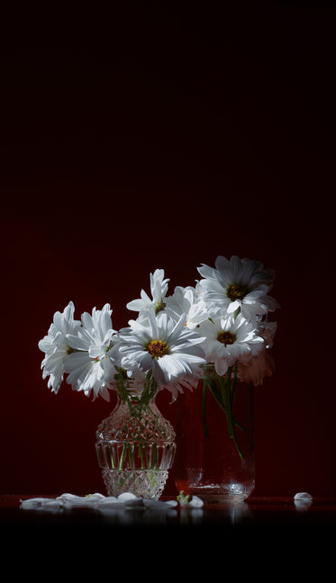 glass jar and glass vase with white daisies