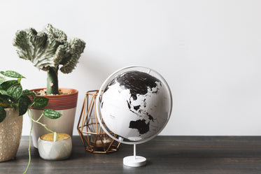 globe and plants on desk