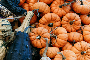 gourds and pumpkins texture