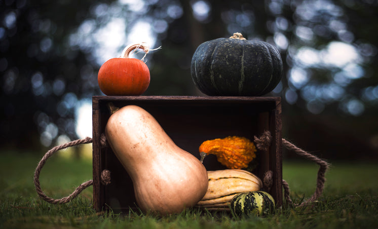 Gourds In Crate