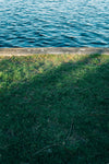 grassy edge by calm blue water