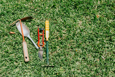 green grass with gardening tools on the left side of the frame