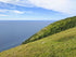 green grassy hill by the sea