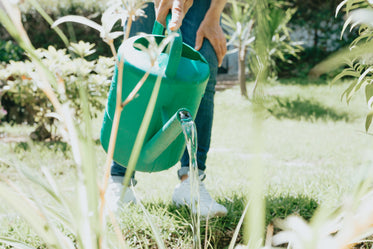 green watering can pours water in garden