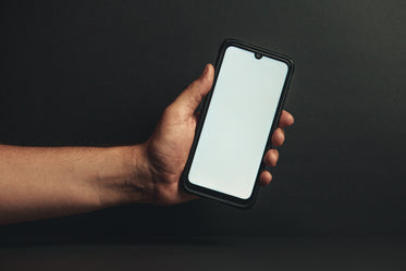 hand holds out phone against black background