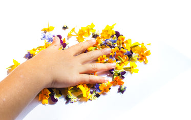 hand placed on flower petals