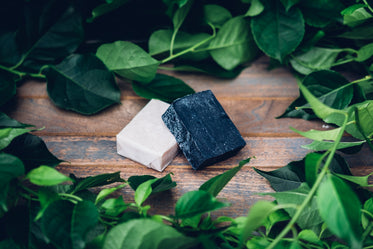 Free Handmade Charcoal Soap Photo — High Res Pictures