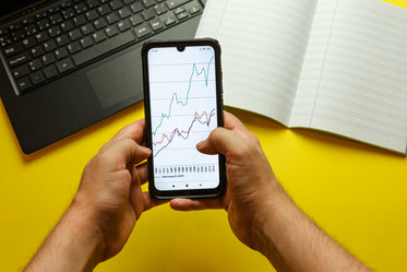 hands hold a cellphone with a graph on screen