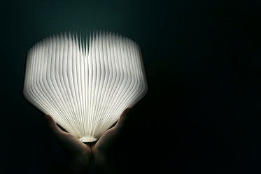 hands holding glowing book