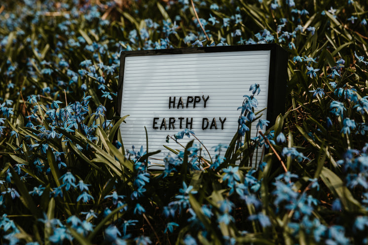 Happy Earth Day Sign In Flowers