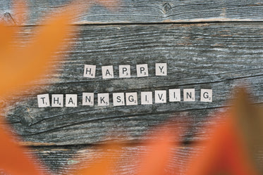 happy thanksgiving letters