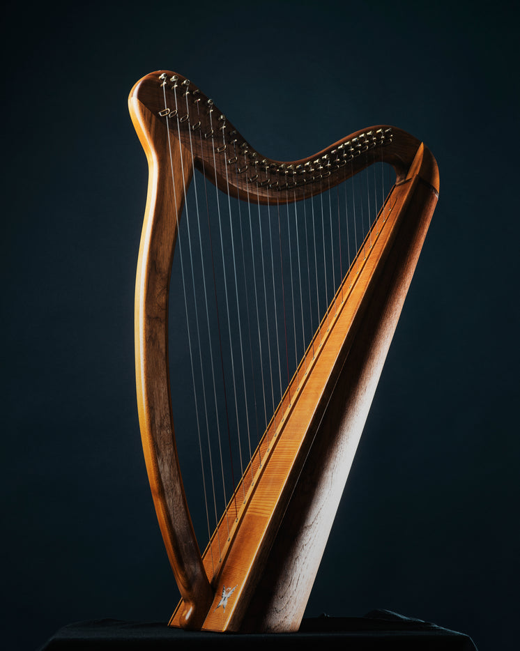 Harp Musical Instrument In Shadows