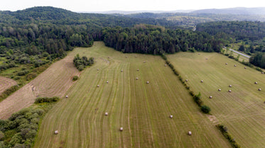 harvested farm fields