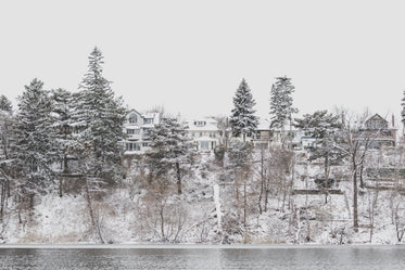 Free Homes On Snowy Waterside Image: Stunning Photography