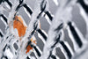 ice coated chain link fence