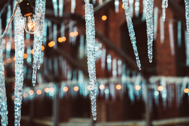 Free Stock Photo of Icicles And Twinkle Ights — HD Images