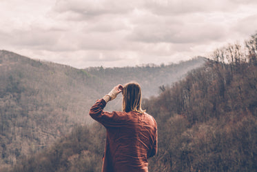 Picture of Into The Wild - Free Stock Photo