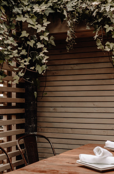 ivy hanging over table