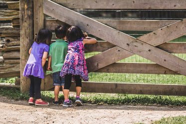 kids at the farm