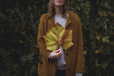 large fall leaf in hand