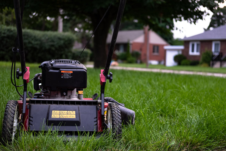Lawn Mower Sitting On Grass