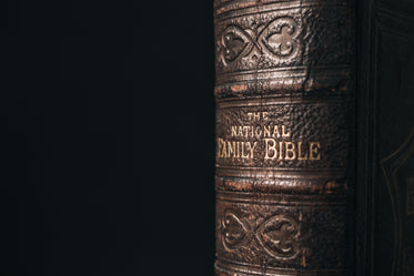 leatherbound spine on embossed bible