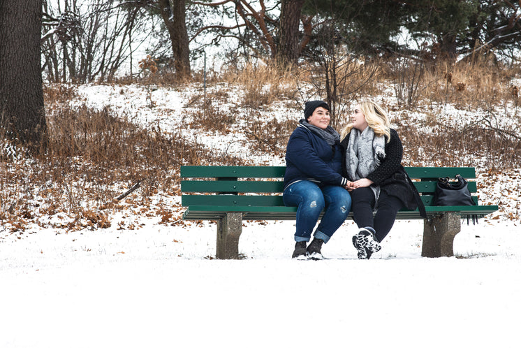 Lesbian Couple Holding Hands On A Green Park Bench