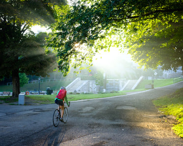 light shining through leaves as woman cycles through park