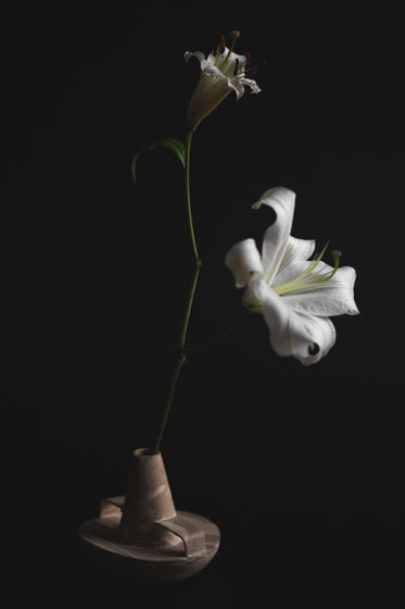 lilies in a vase
