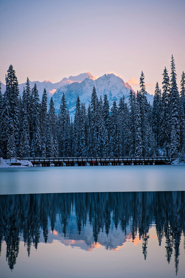 line of frosty pines separates frozen lake from mountains
